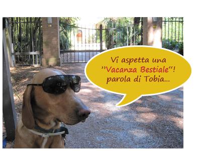 vacanze cane Toscana